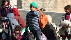 La tragedia que no cesa: miles de iraquíes huyen del Estado Islámico en