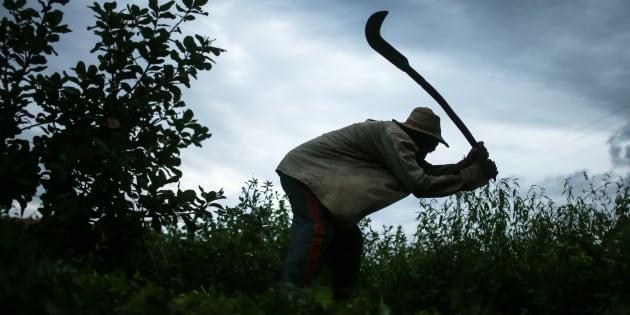 Trabalhador rural que passou por condição análoga à escravidão.