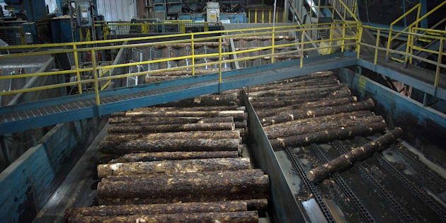 Raw lumber moves into the saw mill at the Resolute Forest Products facility in Thunder Bay, Canada, Ontario, on Friday, Jan. 8, 2016.