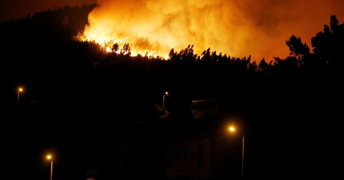 Rogo nei boschi del portogallo 62 morti a pedrogao grande for Cabina innevata nei boschi