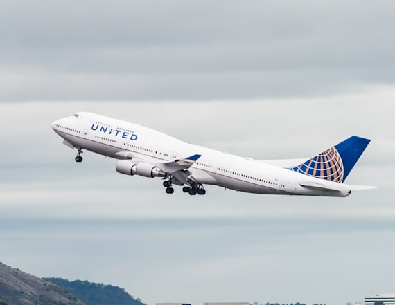 United settles with owner of puppy that died in bin