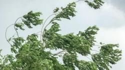 Des vents violents causent des évacuations et des fermetures de rues à