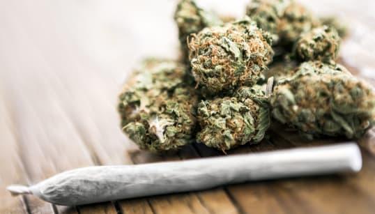 El uso legal de marihuana recreativa gana su batalla más importante en