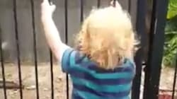 Adelaide Toddler Scales Pool Fence In Viral Drowning