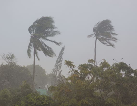 Hurricane Bud strengthens to category 3 storm