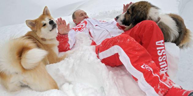 Vladimir Putin acaricia a sus perros 'Buffy' y 'Yuma' en su residencia Novo-Ogariovo, afuera de Moscú.