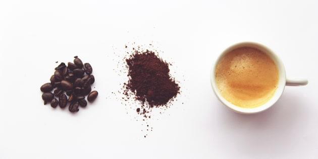 90% du café latino-américain pourrait disparaître à cause du réchauffement climatique