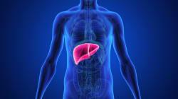 L'immuno-oncologia come nuova arma per combattere il tumore al