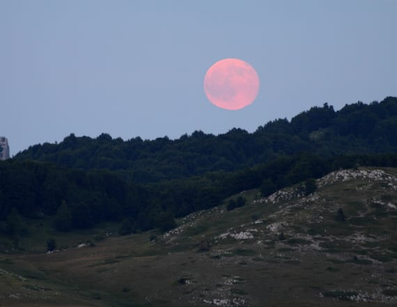 'Pink Moon' to grace nighttime skies Friday night