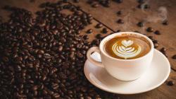 Vuoi gustare un caffè perfetto anche a casa? Guida all'acquisto delle migliori