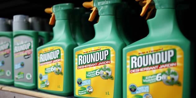 Qui contre Monsanto? La question qui fâche du HuffPost au président de Générations Futures
