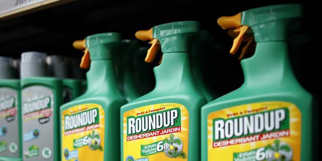 Comment Se Debarrasser Du Roundup Et Autres Herbicides Le