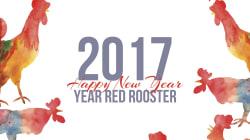 Así será el año del Gallo según tu horóscopo