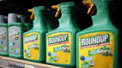 Qui contre Monsanto? La question qui fâche du HuffPost au président de Générations