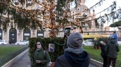 Ora il Campidoglio si gode Spelacchio. L'albero di Natale a Piazza Venezia diventa una meta di