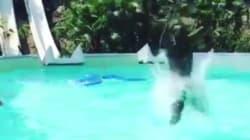 Per un tuffo in piscina Balotelli ha rischiato di saltare l'inizio di