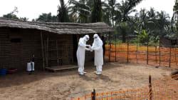 Organización Mundial de la Salud confirma segundo caso de Ébola en el