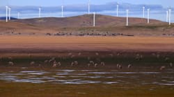 The Heroic Farmer Sticking It To The Government One Wind Turbine At A