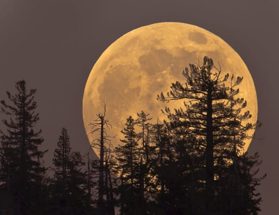 'Super Snow Moon' to light up skies this weekend