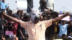 Jallikattu Legalised In Tamil Nadu, O Panneerselavam's Bill Passed In State