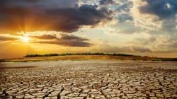 Sulla crisi climatica ci comportiamo come la rana in