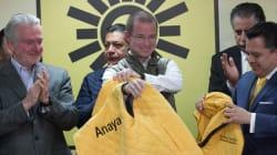 Anaya: El amarillo