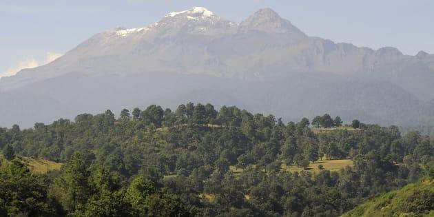 La Ley General de Biodiversidad y la Ley Forestal modificará la forma de aprovechar los recursos forestales y silvestres en México, dejando fuera a los pobladores rurales de esas regiones.