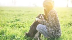 La historia del perro que ayuda a las personas a superar la muerte de un ser