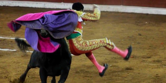 Un torer es cornal en la corrida en honor a San Luis Rey de Francia que se organiza cada año en México.