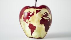 L'allarme della FAO su clima e