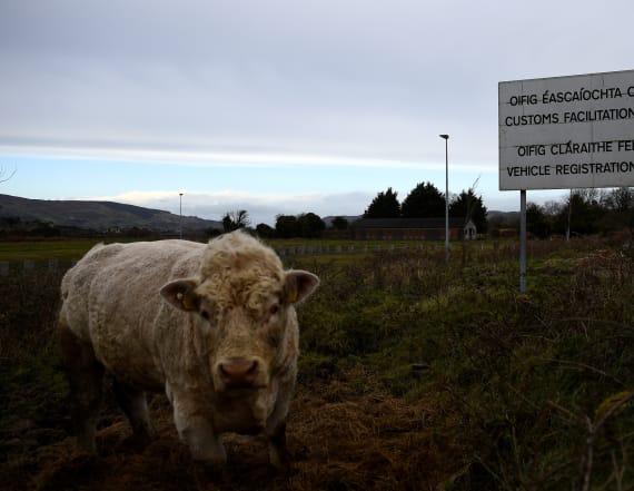 Irish locals crave status quo after Brexit