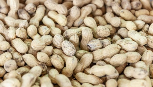 'Game-Changer' Study Suggests Peanut Allergies Can Be Treated