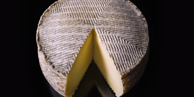 Wheel of manchego cheese on black background