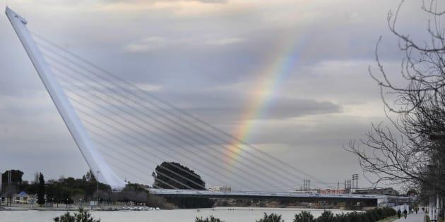El puente del Alamillo, sobre el Guadalquivir, en un punto próximo a donde ha tenido lugar el ahogamiento.