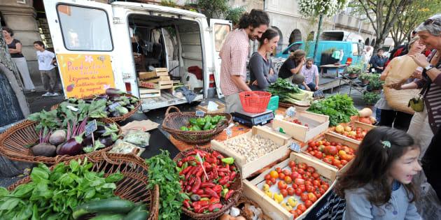 Un étalage de fruits et légumes bio sur le marché de Revel.