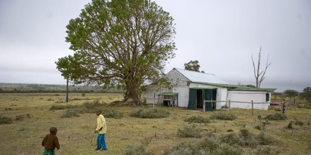 Yarrow farm in the Makana municipality in Grahamstown, South Africa.