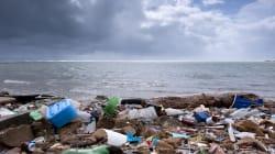 VIDEO: ¿Nuestros océanos se pueden