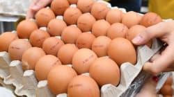 Come riconoscere le uova al Fipronil. Ma resta il problema dei