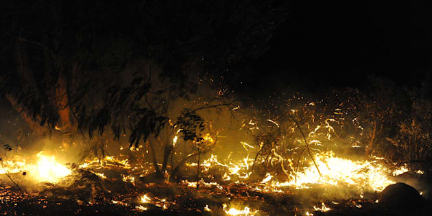 More than 10 000 people were forced to flee their homes overnight as fires fuelled by storm winds ripped through the Western Cape coastal town.