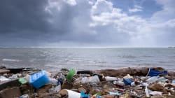 Contro l'inquinamento da plastica è fondamentale anche il comportamento dei
