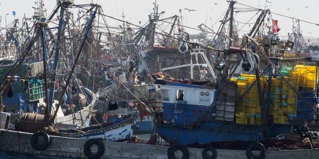 Barcos pesqueros marroquíes atracados en un puerto del Sáhara Occidental ocupado.