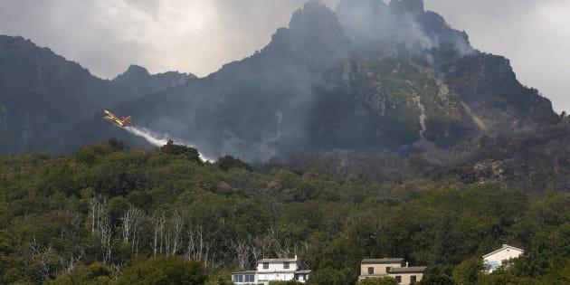 Un Canadair intervient sur un feu à Sisco, en Corse, le 12 août.