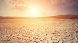 Los muertos por las olas de calor en Europa podrían subir