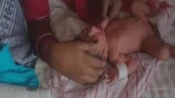 Rats Nibble On Newborn Baby's Fingers At A Hospital In Rajasthan's