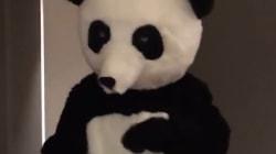 Patrice Evra danse habillé en Panda pour passer un