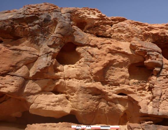 Ancient camel rock art found in remote Saudi Arabia