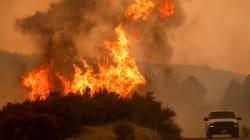 La Californie est en proie au plus grand incendie de son