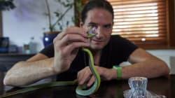 Steve Ludwin s'injecte du venin de serpent depuis une trentaine
