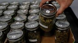 La criminalización de la marihuana es derrotada en tres estados de