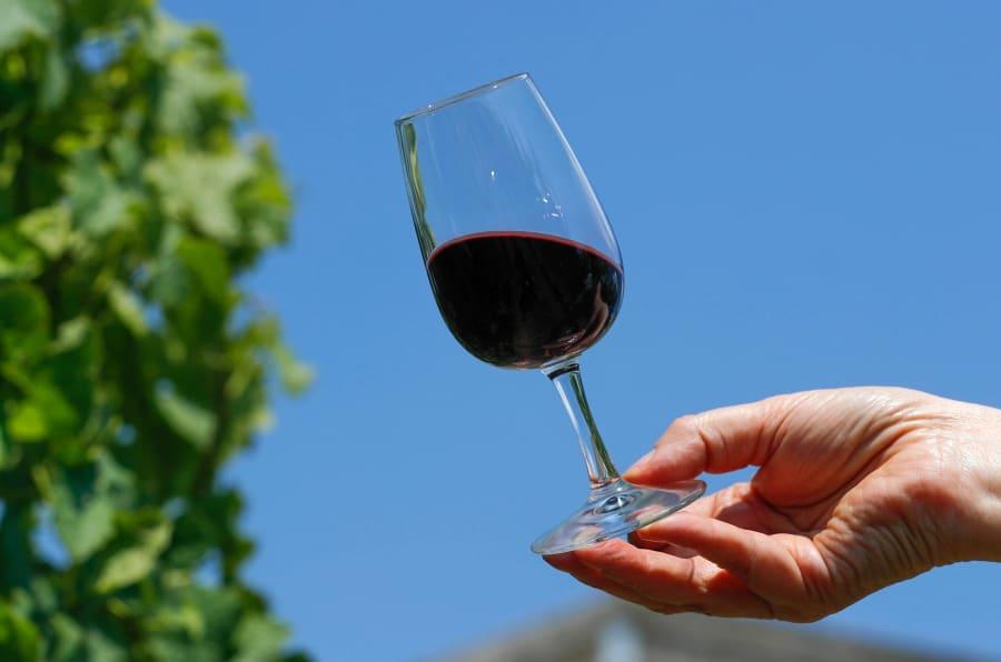 Esto es lo que debes saber para evaluar la calidad de un vino.